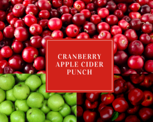 Cranberry Apple Cider Punch - Holiday Drink Recipes
