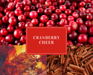 Cranberry Cheer Holiday Drink Recipes