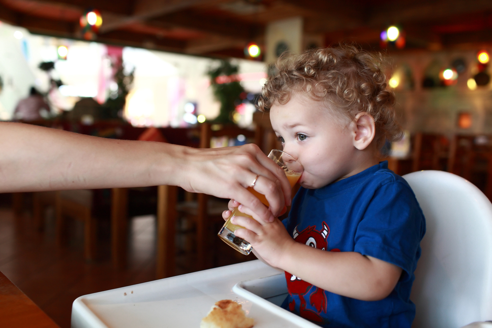 high chairs germs in restaurants