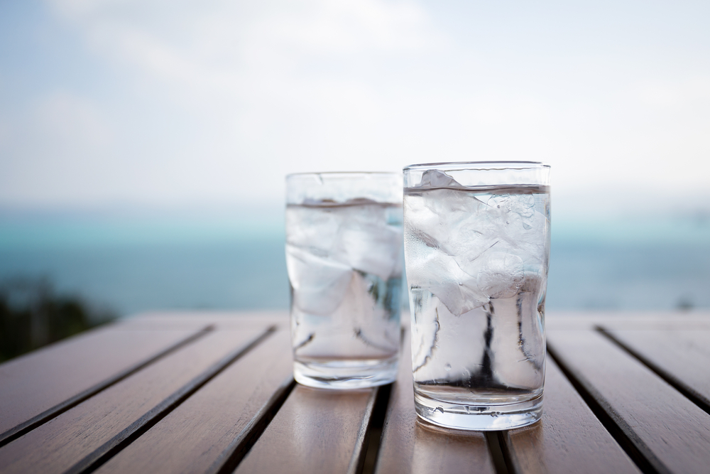 ice germs in restaurants
